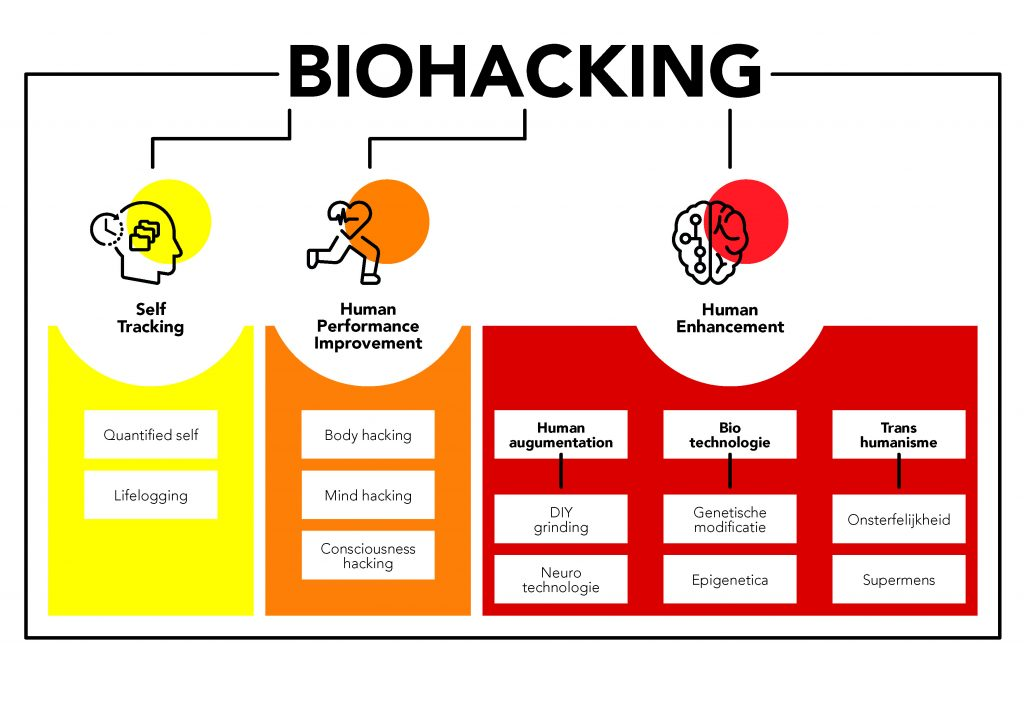 biohacking model and explanation