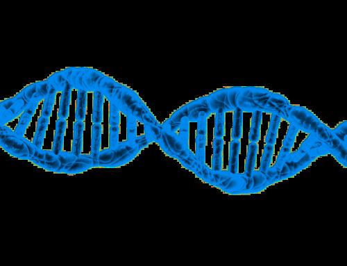 Epigenetica. Wat, hoe en waarom! (incl. 2 voorbeelden + tips)
